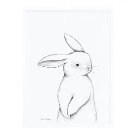 Framed Art Print Bunny Front View (30x40cm)