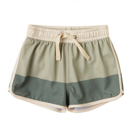Board Shorts - Fern