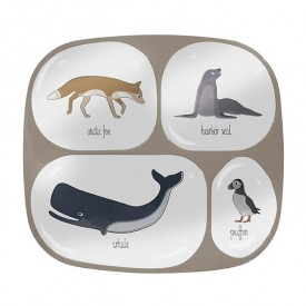 4 compartments plate - Arctic Animals