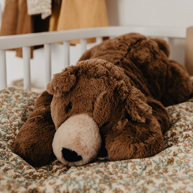 Woody Bear Lying (65cm) Brown Jellycat